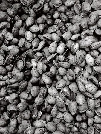 Assortment of fresh nuts in black and white