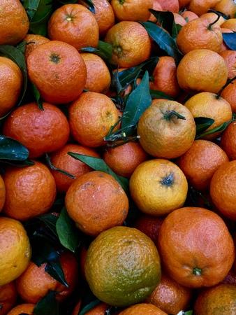 fresh fruit Banque d'images - 126487174
