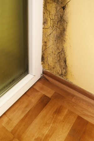basement: Moisture and mold -Problems in a house Stock Photo
