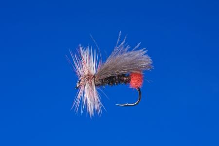 Fly fishing hook photo