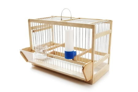 glass fence: Birdcage Stock Photo