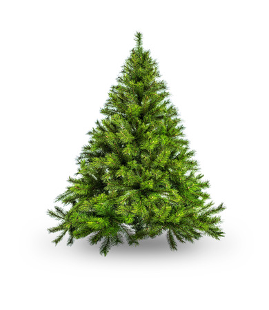 huge christmas tree: Artificial Christmas tree without decoration on white