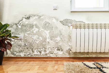 Damage caused by damp on a wall in modern house 스톡 콘텐츠