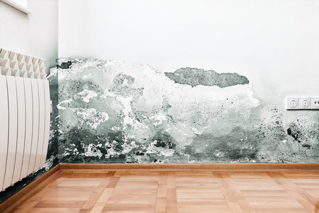 humid: Mold and moisture buildup on wall of a modern house