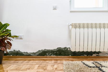 bacterias: Los daños causados ??por la humedad en una pared en la casa moderna