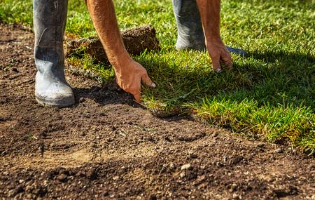 새로운 잔디를 위해 잔디 잔디 롤을 줄이기
