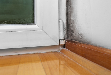 Condensation cause mold and moisture in the house Stock Photo