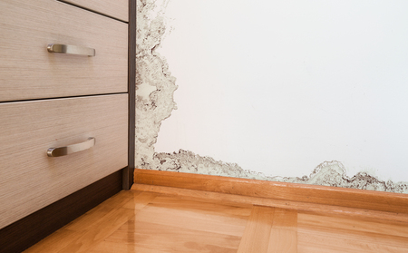 dankness: Mold and moisture buildup on wall of a modern house