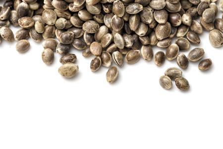 Hemp seeds on white background Stockfoto
