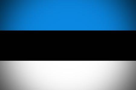 estonia: Estonia flag ,original and simple Estonia flag