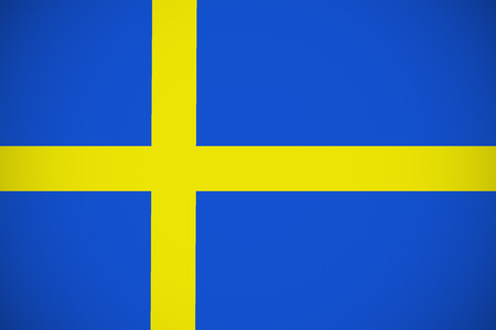 sweden flag: Sweden flag ,Sweden national flag illustration symbol.