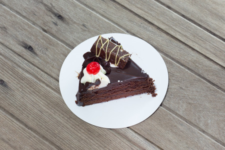 shiver: Delicious chocolate cake on plate on table on light background