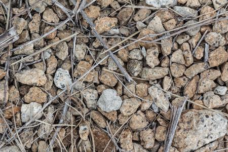 pebble: various pebble stones texture