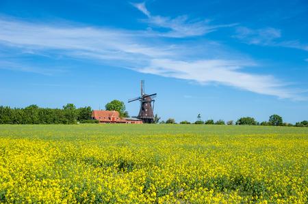 Mühlen und Landwirtschaftsmuseum, Lemkenhafen, Insel Fehmarn, Ostsee, Schleswig-Holstein, Deutschland, Europa