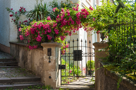 Garden door with Rose shrubs at the castle stairs, Baden-Baden, Black Forest, Baden-Wurttemberg, Germany, Europe