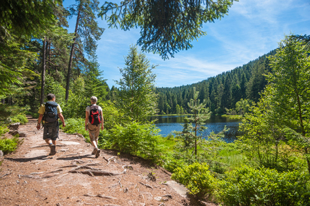 Hikers at the Herrenwieser See, Westweg, Forbach, Black Forest, Baden-Wuerttemberg, Germany, Europe Stockfoto