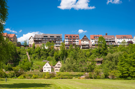 citypark: View from the city-park to the upper town of Wildberg, Black Forest, Baden-Wuerttemberg, Germany, Europe