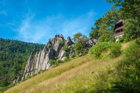 woody: The organ rocks at Reichtal in the Black Forest. Baden-Wurttemberg, Germany, Europe Stock Photo