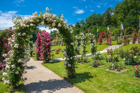 jardines con flores: El jardín de rosas Beutig en Baden-Baden, Selva Negro, Baden-Wurttemberg, Alemania, Europa