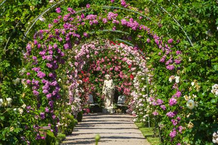 jardines con flores: estatua de los arcos de rosas y dioses en el Rose Garden Beutig, Bosque Negro, Baden-Wurttemberg, Alemania, Europa