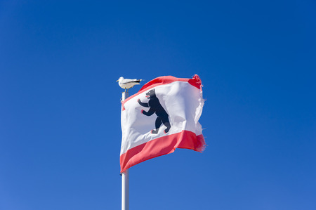 The country flag of Berlin with gull on the sea bridge at the south beach in Gro??¸enbrode