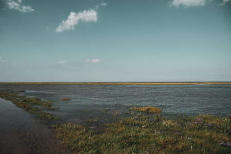 Coming tide in the salt marshes. Fedderwardersiel in East Frisland in Germany.
