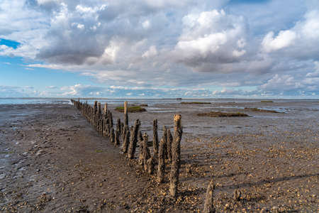 Wooden groynes in the Wadden Sea National Park in Harlesiel. Harlesiel is a holiday resort in East Frisia and is located on the North Sea coast in Germany.