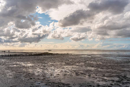 Landscape with wooden groynes in the Wadden sea National Park in Harlesiel. Harlesiel is a holiday resort in East Frisia and is located on the North Sea coast in Germany.