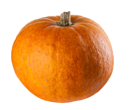 not ready: A perfect pumpkin ready for you to add a face. This is a real grown pumpkin, not foam or plastic.