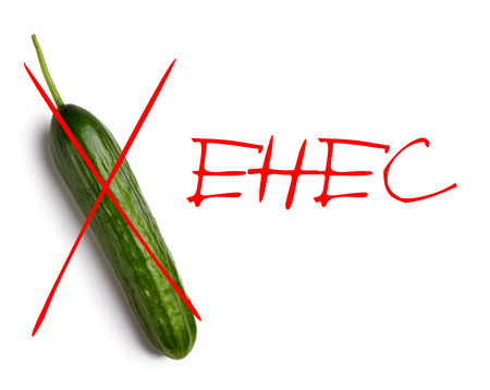 ehec: Cucumber infected e. coli isolated on white