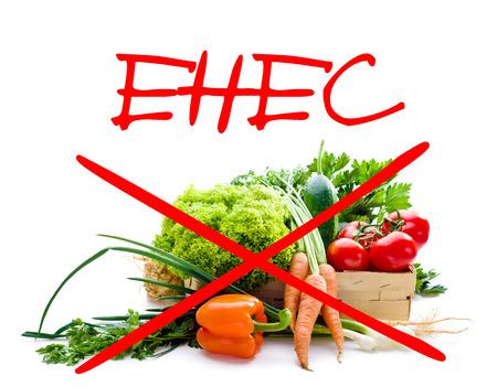 e coli: EHEC epidemic alert