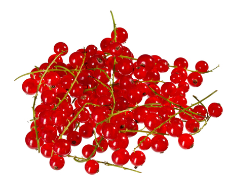 red currant: Fresh red currant isolated on white background Stock Photo