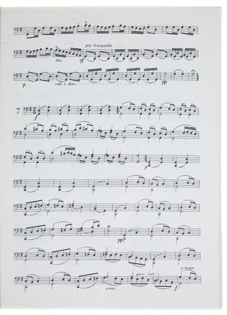 muziek blad geïsoleerd op een witte achtergrond