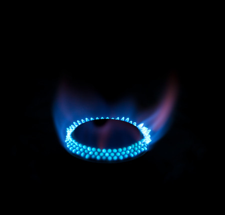 gas burner: Blue flames from gas burner