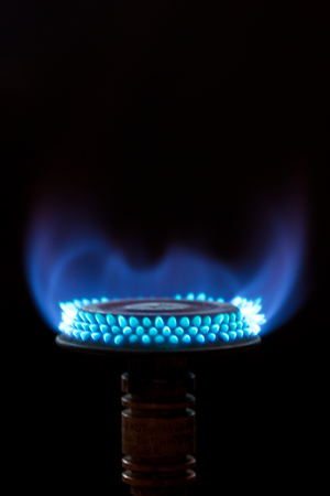 blue flames: Blue flames from gas burner