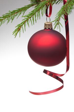 christmas tree ball: Christmas ball with curly ribbon on christmas tree Stock Photo