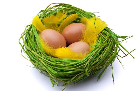 eastertime: Nest full of Easter eggs on white background