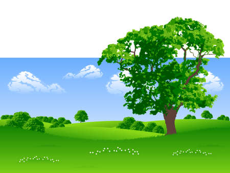 remote view: Summer landscape with trees and flowers vector illustration
