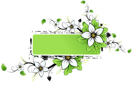 Grunge Vector frame AD with spring flowers and leaves
