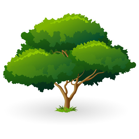 Green Tree Icon with grass isolated on white