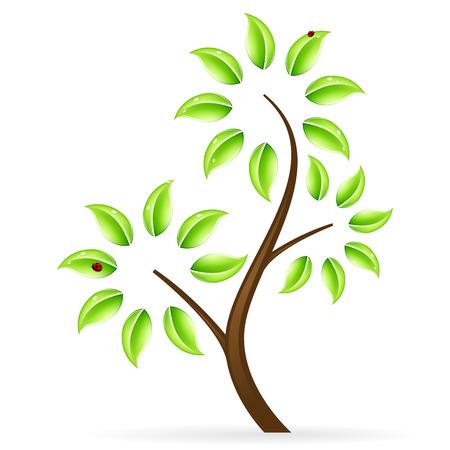 Icône abstraite arbre vert avec des feuilles isolées sur blanc