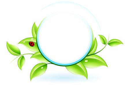 Écologie vert concept avec plante et ladybird pour votre conception