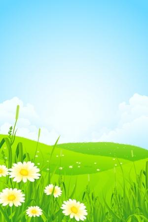Naturaleza Paisaje verde con flores y nubes Ilustración de vector