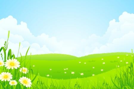 Nature Paysage vert avec des fleurs et des nuages