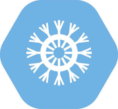 This is a snowflake vector