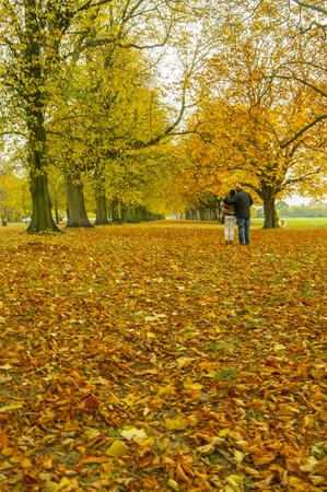 スポンジング romatic 散歩を持っているカップル 写真素材