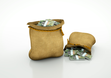 oportunity: Two Sacks of bahrain money isolated on white background
