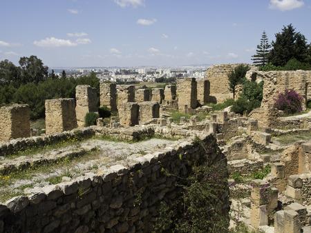 tunis: Tunis Stock Photo