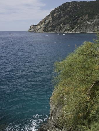 monterosso: Monterosso
