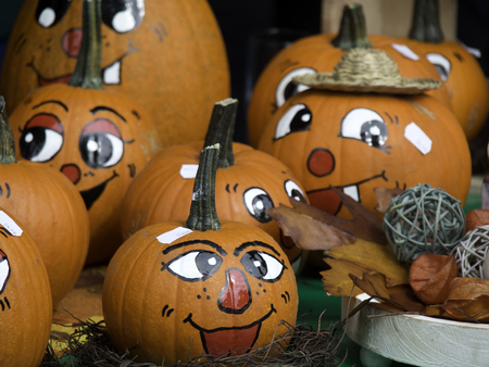 dynia: pumpkins